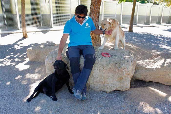 Residencia Canina Barcelona-23