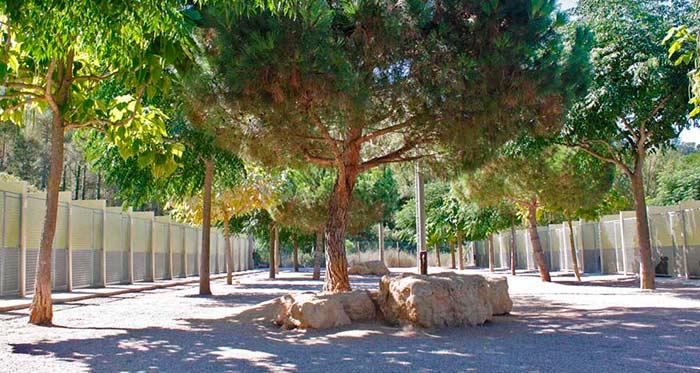 Residencia Canina Barcelona-7