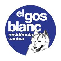 el gos blanc residència canina